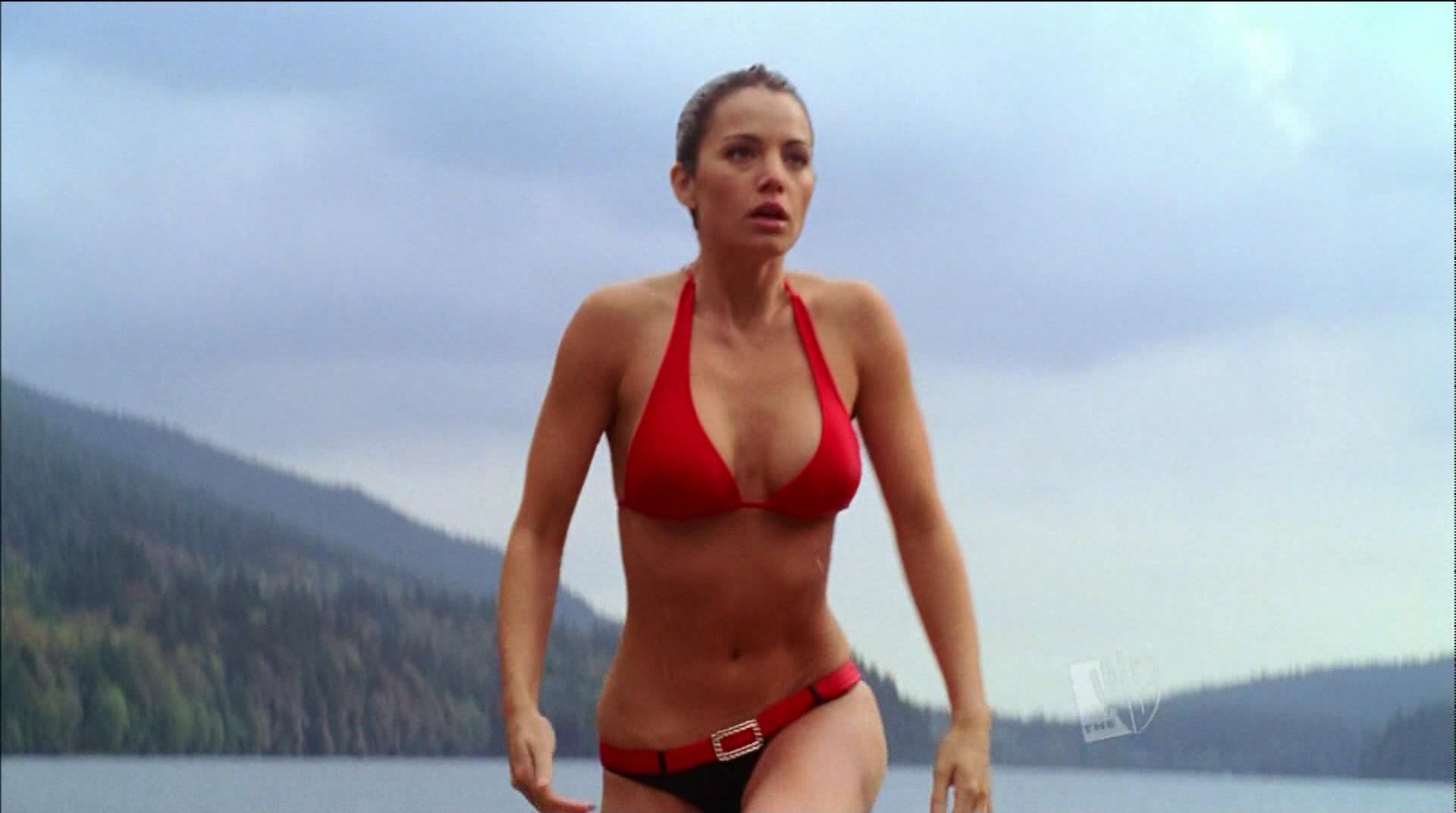 Understand Erica durance bikini thanks. You