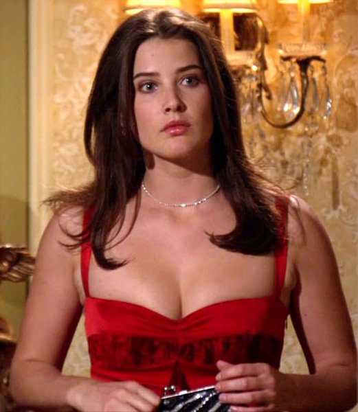 Cobie smulders boobs
